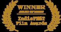 winner award of merit indiefest film awards