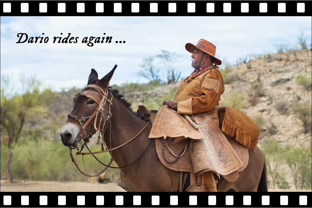 dario rides again